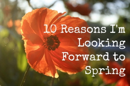 10 Reasons I'm Looking Forward to Spring - Sweet and Savoring
