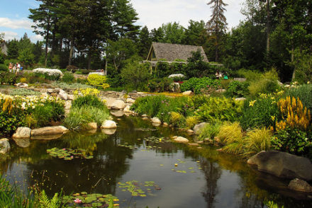 Coastal Maine Botanical Gardens - Sweet and Savoring