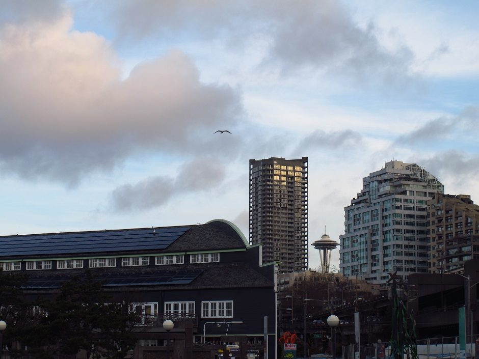 Early Morning in Seattle: A Photo Essay - Sweet and Savoring